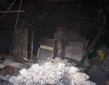 pigeon guano removal london